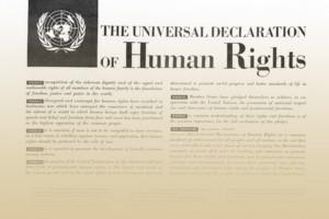 Človekove pravice in OZN
